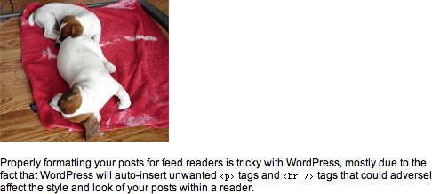 Proper image display in Google Reader