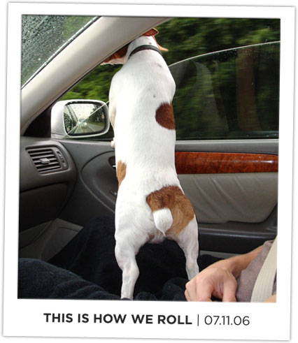 This is how we roll, an image of Deuce hanging out the car window.