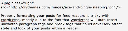 WordPress post entry field