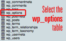 Select the wp_options table inside phpMyAdmin